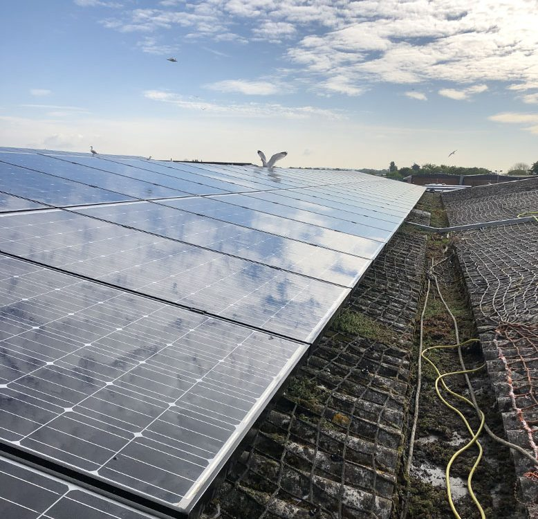 solar panels clean in Chichester