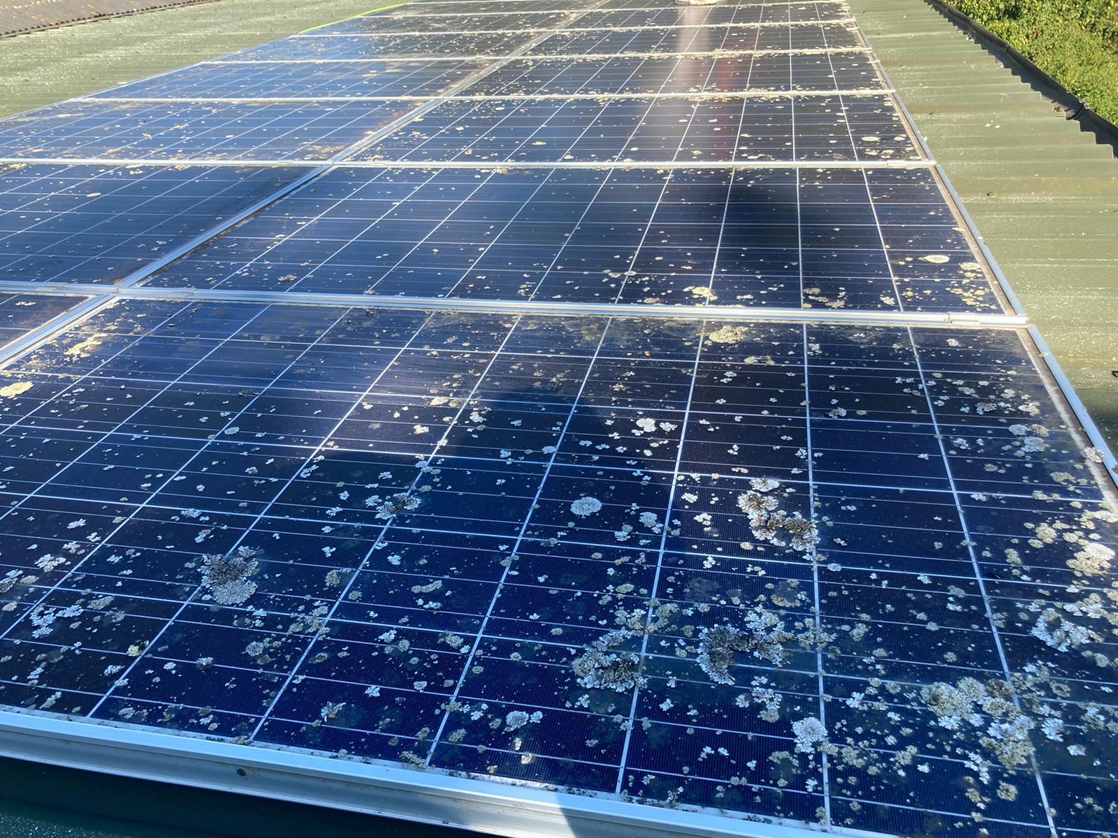 commercial solar maitnenance before clean